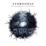 Beachcomber's Windowsill